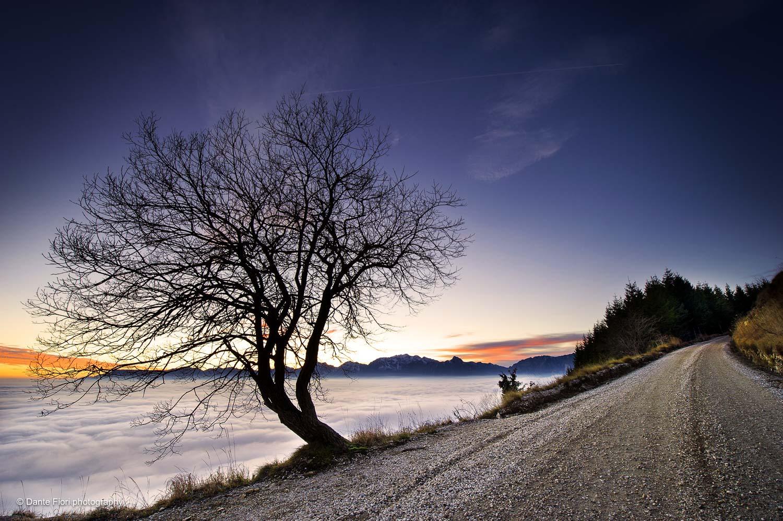 fotografia di paesaggio - street - natura - colori